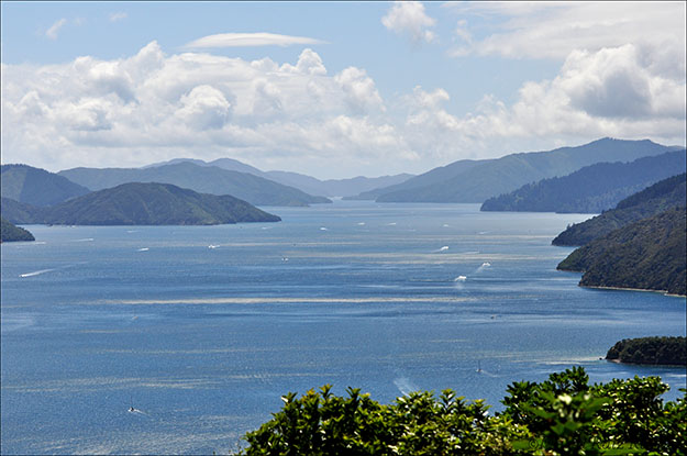 Vista de los Marlborough Sounds