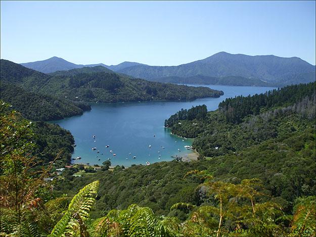 Bahía Logmara, donde Peter construyó su casa hace 26 años