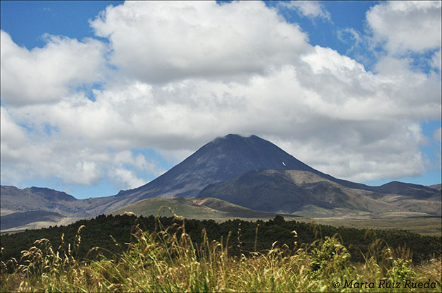 Mt. Tognariro desde Mangatepopo