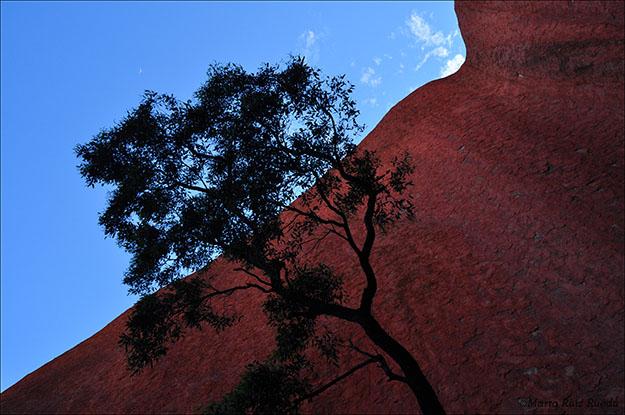 Una de las perspectivas de Uluru