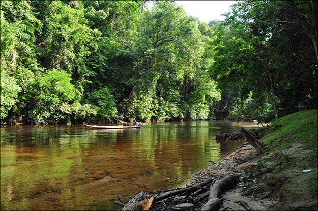 Uno de los ríos que atraviesa Taman Negara