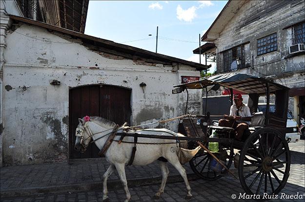 Calle Crisologo de Vigan