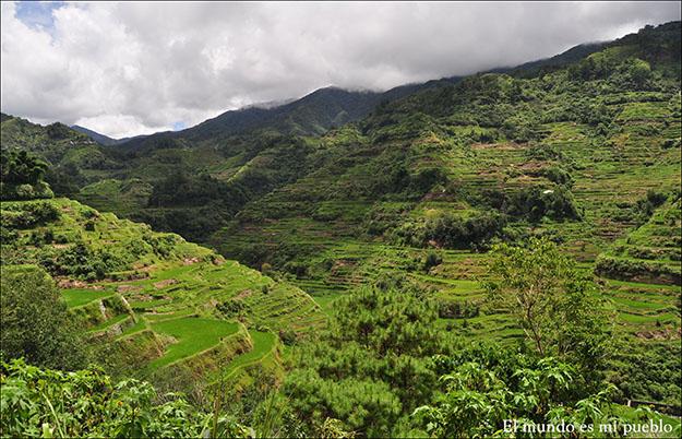 Montañas de arroz en Banaue