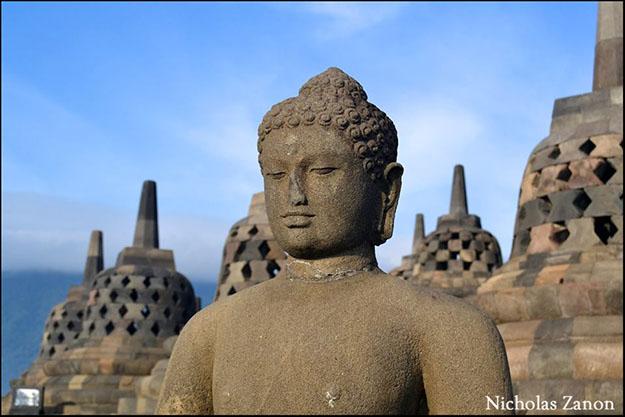 Los más de 500 budas reinan el Templo