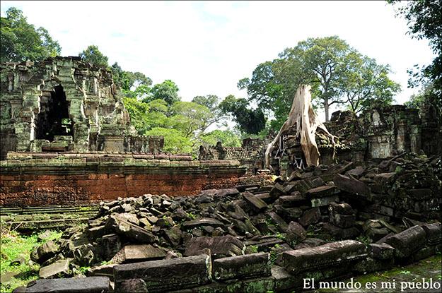 El templo Ta Prohm es la imagen más fotografiada de la simbiosis entre naturaleza y arquitectura