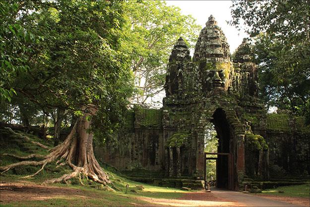 En el recorrido por Angkor la vegetación y la huella de los jemeres se entremezclan