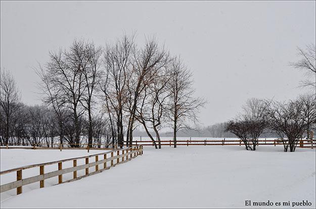 Rodeados de un paisaje más invernal que primaveral